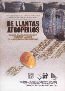 De llantas y atropellos. Centro de Análisis Multidisciplinario - UNAM.